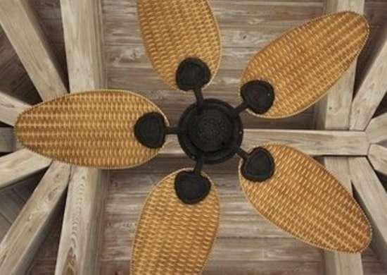 Ceiling fan1
