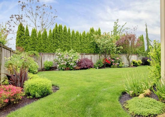 29+ Backyard One Word Or Two Gif - HomeLooker