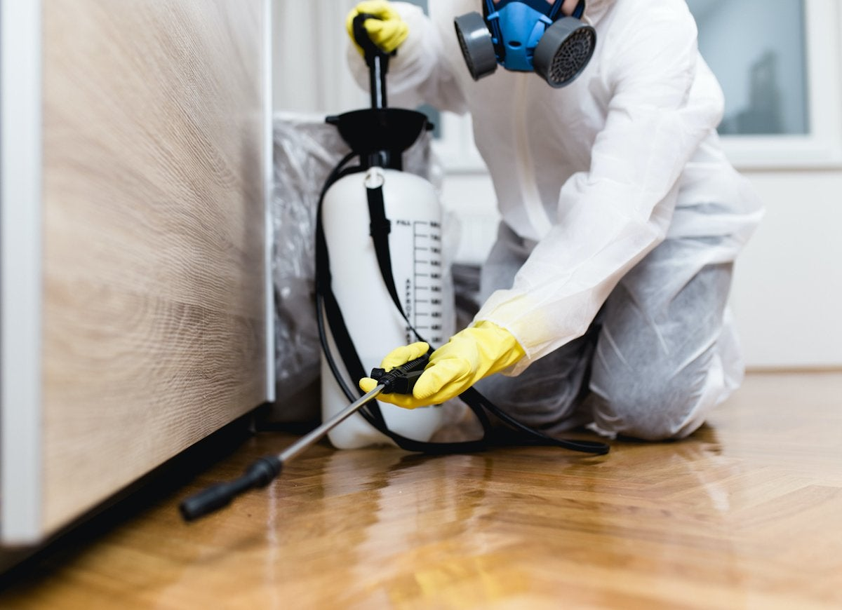 Commercial Pest Control Abbotsford