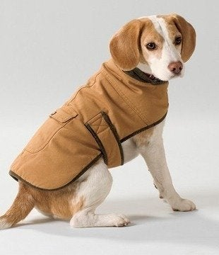 Llbean-field-coat-bob-vila-pet-dog-gifts