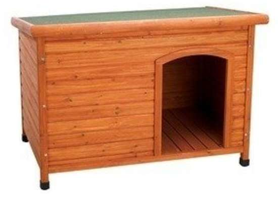 A Canine Shelter
