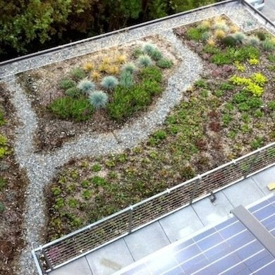 Greenroofhouse