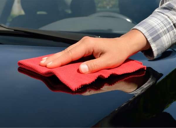 clean bugs off car
