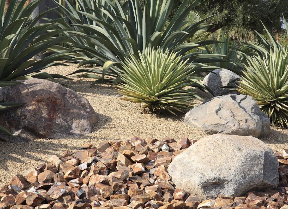 How To Get Rid Of Ticks 9 Landscaping Tips Bob Vila