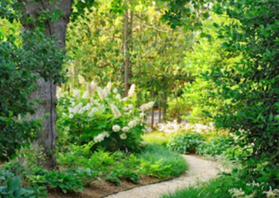 DIY Garden Path Backyard Landscaping Ideas 7 Budget