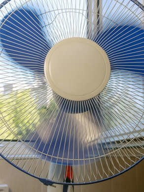Fans Repel Bugs
