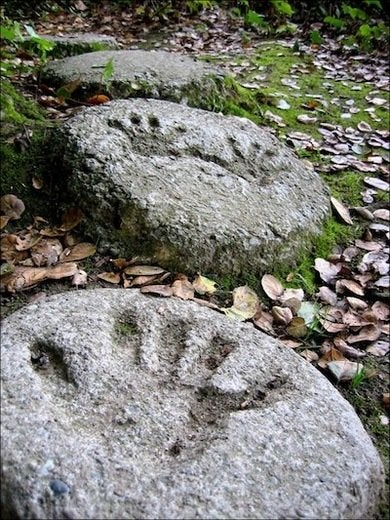 Make stepping stones 10 diy ideas to brighten any garden walk handprint cement a step stone personalized workwithnaturefo