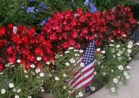 Patriotic garden walk