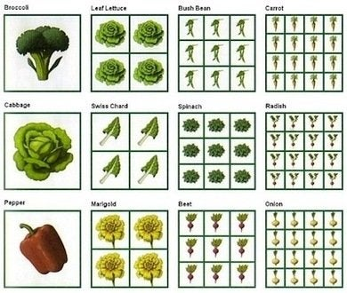 Squarefootgardening-spacingchart-dappledair