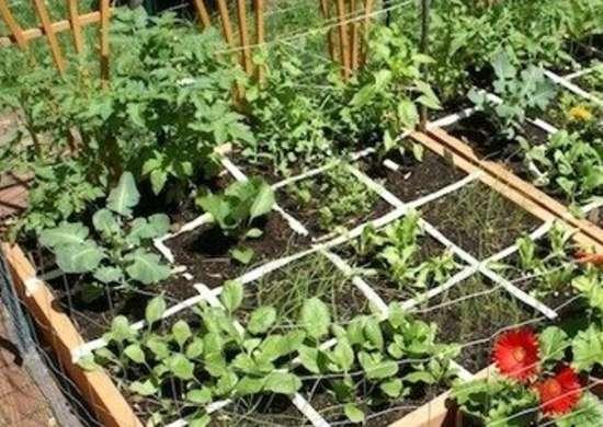 Square foot gardening oldtownmuseum