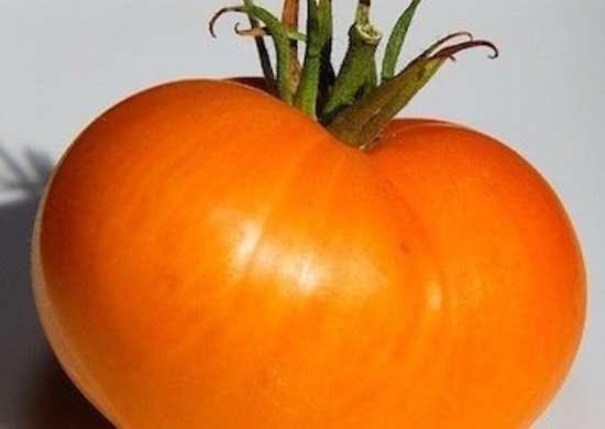 Oxheart Orange