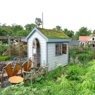 Salvagedandgreenroof