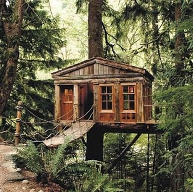 Treehouse_stlouistreehouse.com