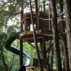 Treehouse Slide