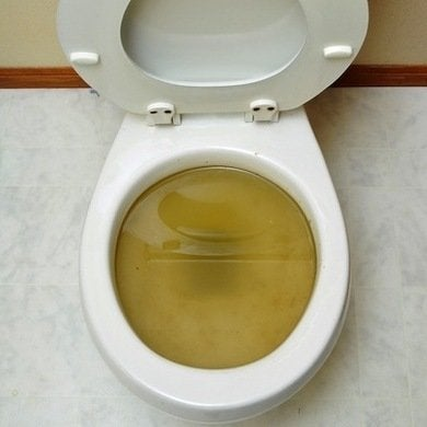 Clogged Toilet If You Re Like Most People Don T Give Much Thought To The Drains In Your Bathroom And Kitchen Fixtures That Is Until Something Goes
