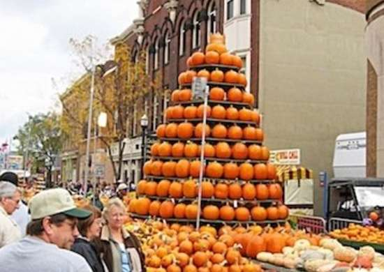 Circleville pumpkin