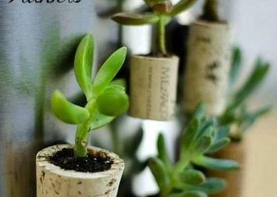 Diycorkplanters