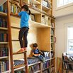 Library Ladder