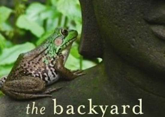 The_backyard_parables_cover