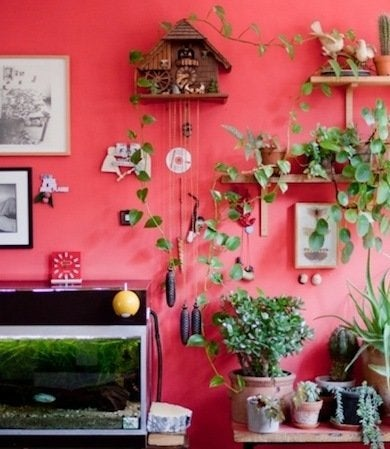 Red Rooms - 34 Spaces Splashed with Crimson - Bob Vila