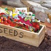 Do Some Early Garden Planning