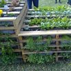 Shipping Pallet Raised Garden Bed