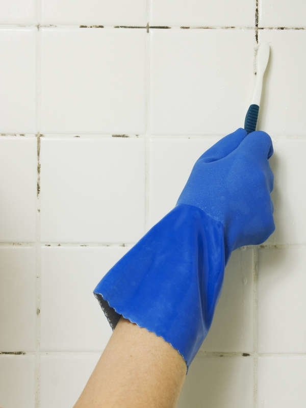 How To Get Rid Of Mold Places Household Mold May Be