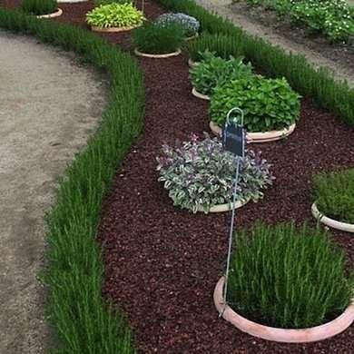 Plant Edging
