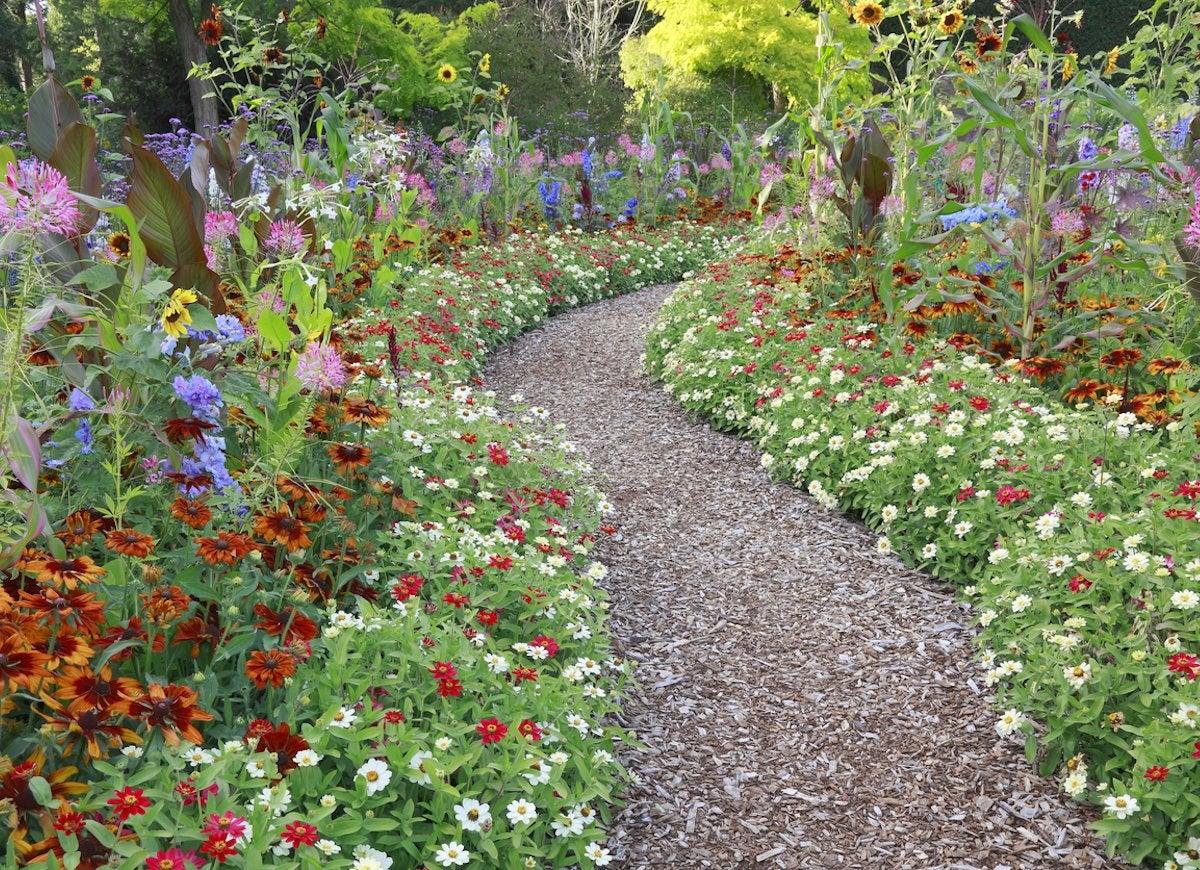 Mulch garden path