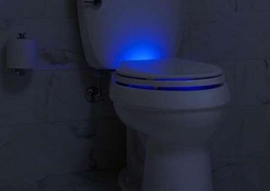 Kohler Lighted Toilet Seat