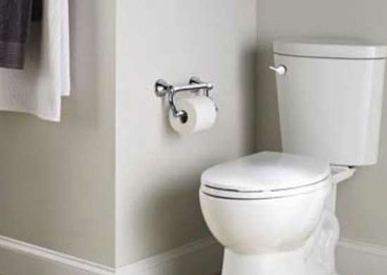 Delta Toilets