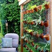 Hanging Terra Cotta Planter