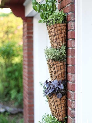 Wire mesh vertical garden