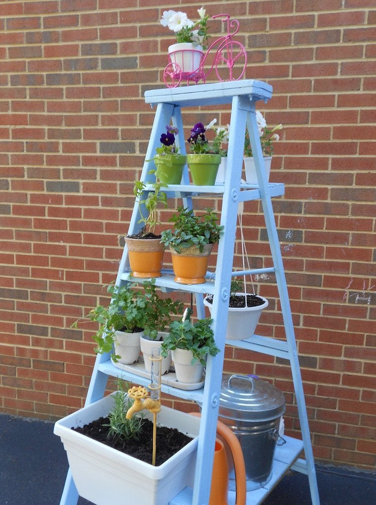 Step ladder planter