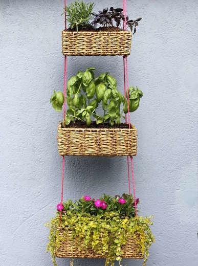 Hanging basket vertical garden