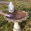 Rinse Bird Bath
