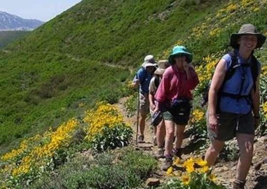 Volunteer with Sierra Club