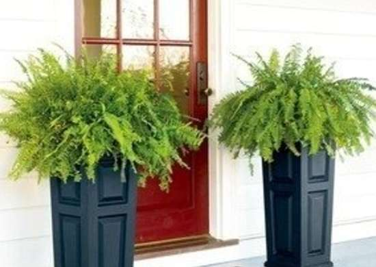 Plowhearth self watering nantucket planter bob vila curb appeal 20111123 36322 f3gi3u 0