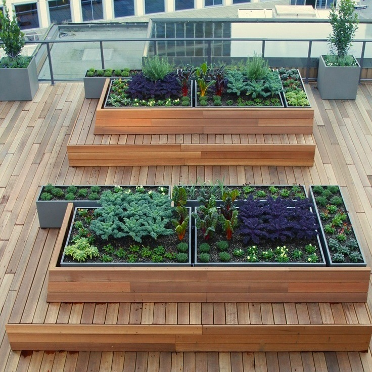Raised Beds on Rooftop - Rooftop Gardens – 10 Ways for a ...