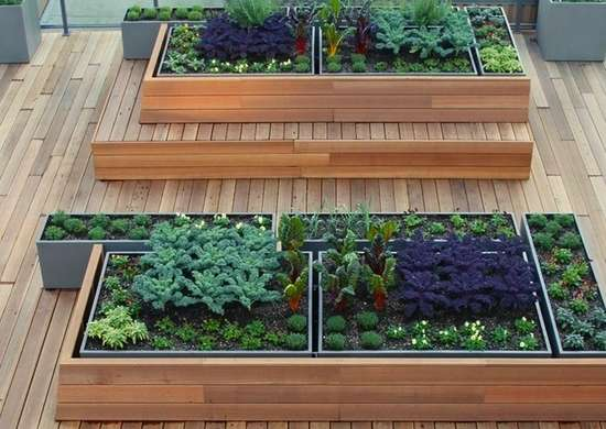 Rooftop Gardens 10 Ways For A Living Roof Bob Vila